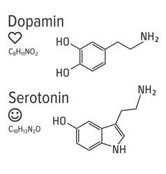 Dopamin and serotonin hormones chemical vector