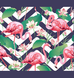flamingo bird and tropical flowers background vector image