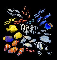 Graphic ocean fish vector