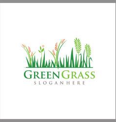 lawn care logo turf grass logo design vector image