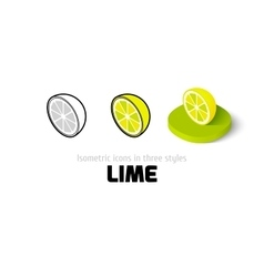 Lime icon in different style vector image