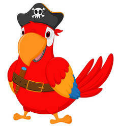 pirate parrot cartoon vector image vector image