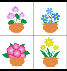 Flowers in pots on white background vector