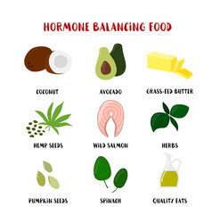 Food for hormone balancing set isolated on white vector