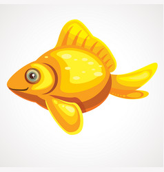 gold fish isolated on a white background vector image