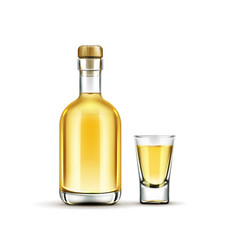 Gold tequila bottle and shot glass mock up drink vector