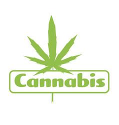 Medical cannabis or marijuana leaf badge ganja vector