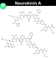 Neurokinin A chemical structure vector