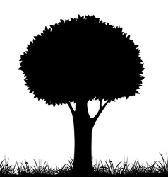 Silhouette of a tree and grass vector