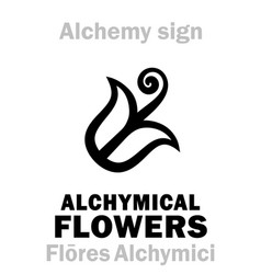 Alchemy alchymical flowers flores alchymici vector