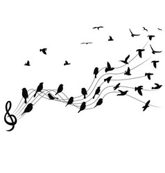 birds musical notes background vector image