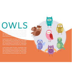 cute cartoon owls banner vector image
