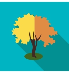 Fluffy autumn tree icon flat style vector image