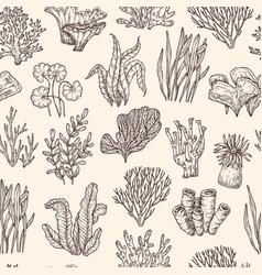 seaweed pattern underwater life seaweeds coral vector image