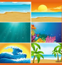 Set summer beach landscape vector