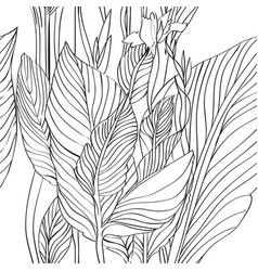 canna leaves pattern vector image