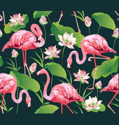 Flamingo bird and tropic flowers background vector