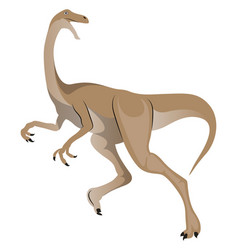 Gallimimus on white background vector