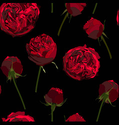 red white roses flowers seamless pattern vector image