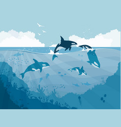 Silhouettes underwater wildlife killer whales vector