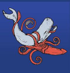 Squid vs whale vector