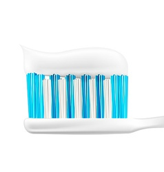 Tooth Brush Design vector