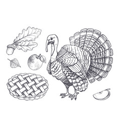 bird turkey and baked pie apple set icons vector image