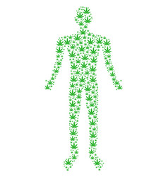 cannabis man figure vector image