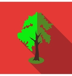 Fluffy tall tree icon flat style vector