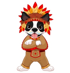 Native American Boston Terrier vector image