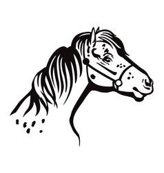 Pony portrait vector