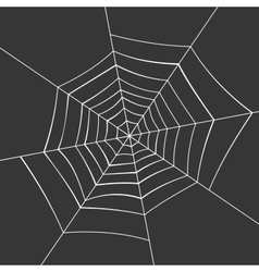 Spiderweb on a Black Background vector image