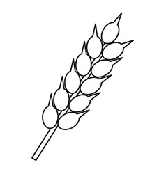 ear of wheat icon outline style vector image