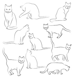 cats silhouette graphic images cats vector image