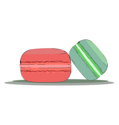 colorful macaroons or color vector image