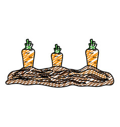 Doodle healthy carrot fresh vegetable cultivated vector