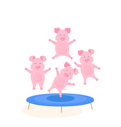 funny pigs jumping on the trampoline cute piggy vector image