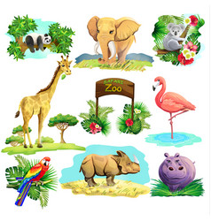 set of zoo safari vector image