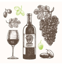 Wine Set Hand Draw Sketch vector