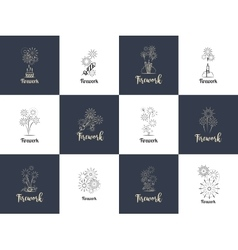 Firework logo design set vector image