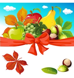 Autumn still life with fruit vegetables and vector