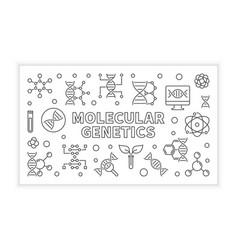 Molecular genetics outline horizontal vector