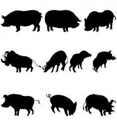 pigs and boars silhouettes set vector image