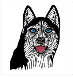 Dog husky head animal vector image