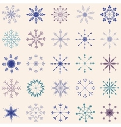 Snowflake set vintage vector image vector image