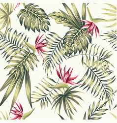 bird paradise flowers tropical palm leaves vector image