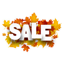 sale background with orange leaves vector image