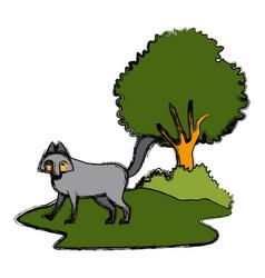wolf cartoon animal icon vector image