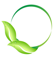 leaf circle vector image vector image