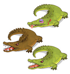 aggressive crocodiles and crocodile with a bruise vector image vector image